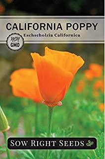 Sow Right Seeds - California Poppy Seeds to Plant - Full Instructions for Planting and Growing a Beautiful Flower Garden; ...