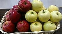 赤りんご・青りんご 訳あり 食べ比べ1箱(各約5キロ 計約10キロ) 産地おまかせ(長野・青森・山形)120サイズ