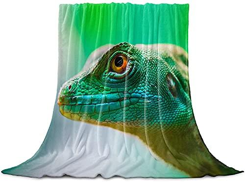 BONRI Manta realista de camaleón, manta de forro polar de franela, acogedora y cómoda, cálida y ligera para mujeres y niñas, bebé de 127 x 152 cm