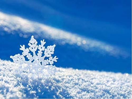 5d DIY kristal mooie diamant diamant geborduurd sneeuw diamant schilderij gevormd sneeuwvlok schaal mozaïek foto hobby decoratie