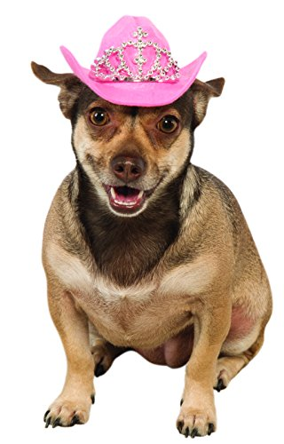 Rubie's Pink Cowgirl Dog Hat with Tiara, M/L