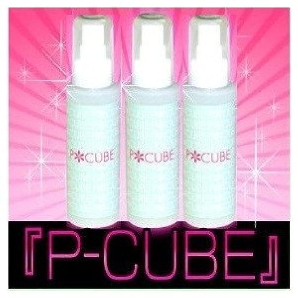 仮定崇拝します硬いP-CUBE 3本セット