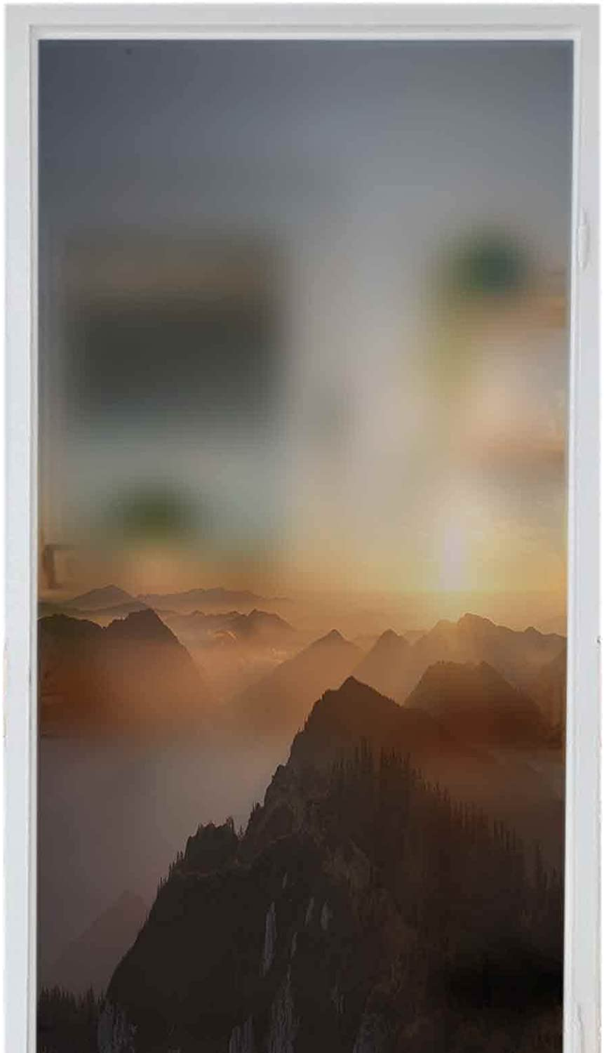 LCGGDB Frosted Glass Stickers Popular product Static The Cover S Classic Beautiful Cling