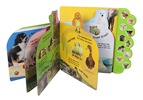 Discovery: Noisy Baby Animals! (10-Button Sound Books)