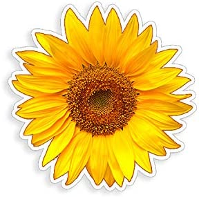 Golden Yellow Sunflower Sticker cup laptop car flower vinyl decal window bumper wall graphic product image