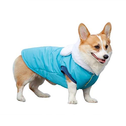 BURFLY Hunde Winter Lustige Dekorative wasserdichte Nette Vlies Normallack Kleidung Blau/Gelb Plus Größe L-3XL Mode Cute Warm Jacket Casual Pullover
