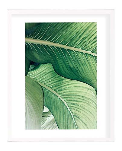 postergaleria Bilderrahmen | 50x70 | Weiß | Holz | Plexiglas | 8 Farben | 5 Größen | Posterrahmen | Fotorahmen