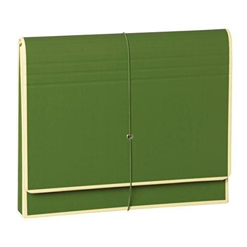 Semikolon (351983) Akkordeon mit Gummiverschluss irish (dunkel-grün) - Sammelmappe/Fächer-Mappe für A4 und US Letter Size - Format: 32,0 x 27,5 cm