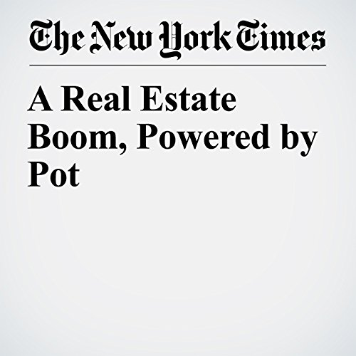 A Real Estate Boom, Powered by Pot audiobook cover art