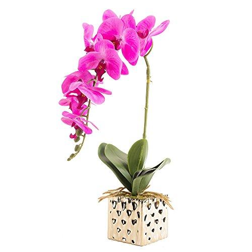CLOCOLOR Flores artificiales de orquídeas de alta calidad para decoración hogar de fiestas (Rojo)