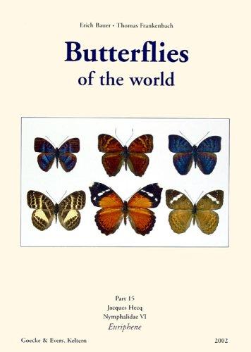 Butterflies of the World / Nymphalidae VI, Euriphene