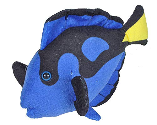 Wild Republic Regal Tang Plush  Stuffed Animal  Plush Toy  Gifts for Kids  Sea Critters 8 inches