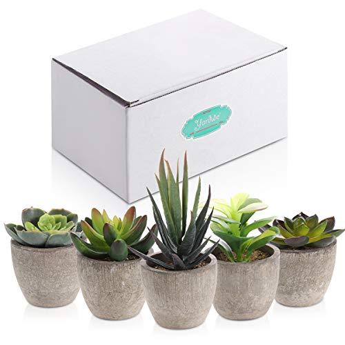 Yardwe 5 Stücke Künstliche Sukkulenten kunstpflanze mit Töpfen Tischdeko Hausgarten Deko - 7