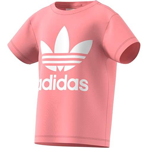 adidas Kinder Trefoil Tee T-Shirt, Glory pink/White, 7-8Y
