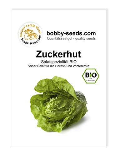 Zuckerhut BIO Salatspezialität von Bobby-Seeds Portion