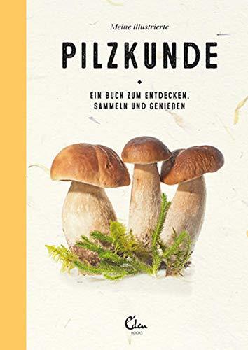 Meine illustrierte Pilzkunde: Ein Buch zum Entdecken, Sammeln und Genießen – Pilze bestimmen ganz einfach