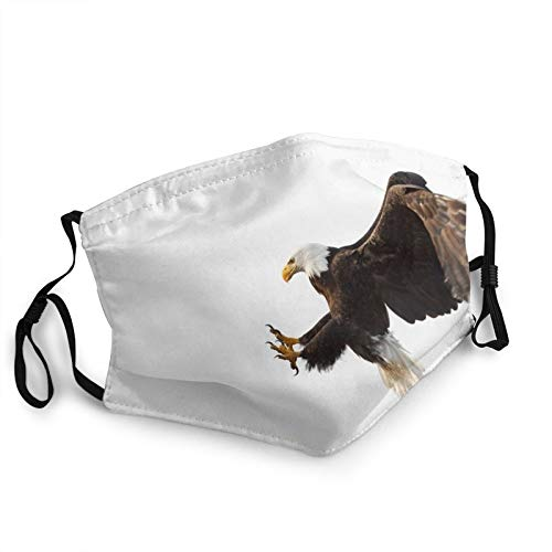 Face Masks for Adults Dust Bald Eagle in Flight White Background, Alaska Washable Reusable Face Bandanas Indoor and Outdoor Activities
