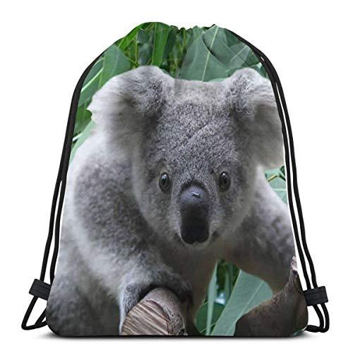 Lsjuee Shoulder Drawstring Bag Koala and Eucalyptus Backpack Sport Bag String Bags School Rucksack Gym Lightweight