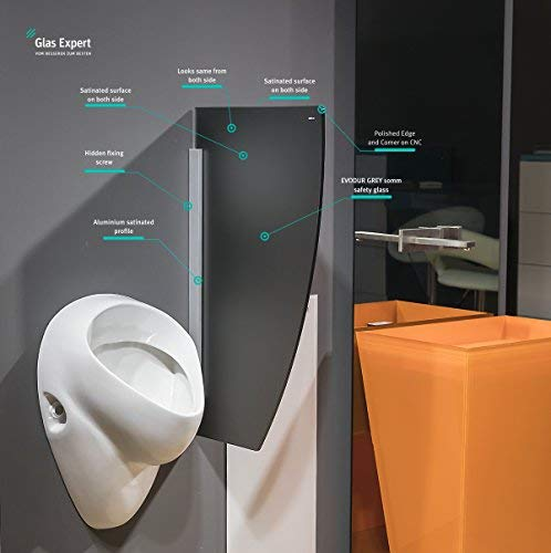 Glas Expert | Glas Urinal Trennwand | 45cm x 80cm | Urinal Glaswand | Bidet Toiletten Schamwand | Glas WC Trennwand (Grau Satin S2)