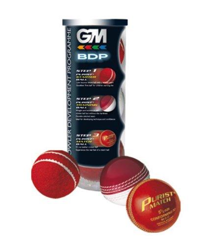 GM BDP - Juego de 3 Pelotas de Cricket
