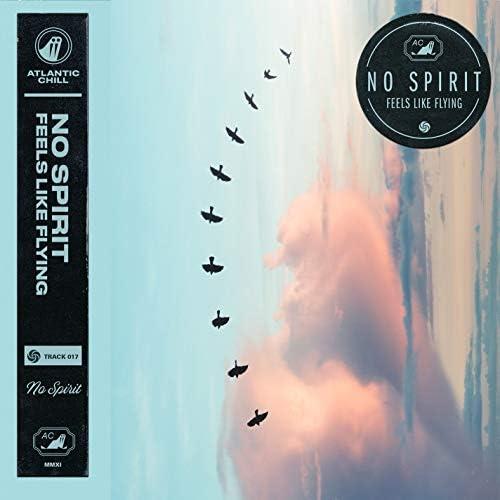 No Spirit & Atlantic Chill