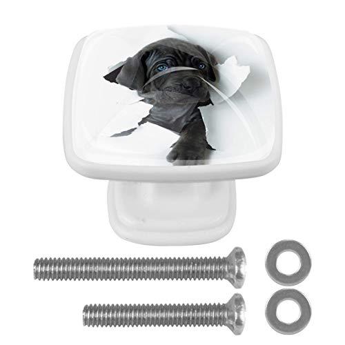 Perilla encantadora del cajón del perro de la pared para la librería 4PCS del aparador del gabinete del hogar con los tornillos