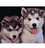 DIY Husky Husky Animal DIY Digital Painting by Numbers...