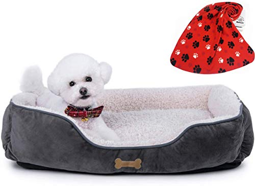 Allisandro Dog Bed   Super Soft Sherpa Dog Crate Bed   Removable Shell and Machine Washable Dog Sleeping Bed, Nonslip Bottom Dog Beds Mattress, 28 L X 24 W X 6.3 H Inches, Grey (A Blanket Included) Beds