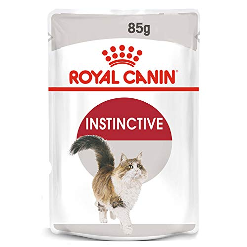 Rc Pochettes instinctives + 7 g 85
