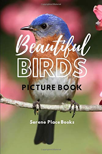Beautiful Birds Picture Book: A Gift Book for Alzheimer's Patients and Seniors with Dementia (Dementia Activities for Seniors and Alzheimers Products)