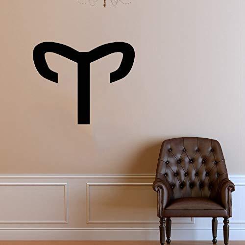 zhuzhuwen MLP muursticker fotografie, familievakantie decoraties vinyl, sterrenbeeld astrologie horoscoop sterren teken 57X70 cm