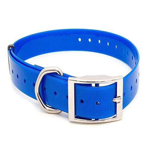 Arcea Polytec Collar para Perro, Azul eléctrico, 38 mm