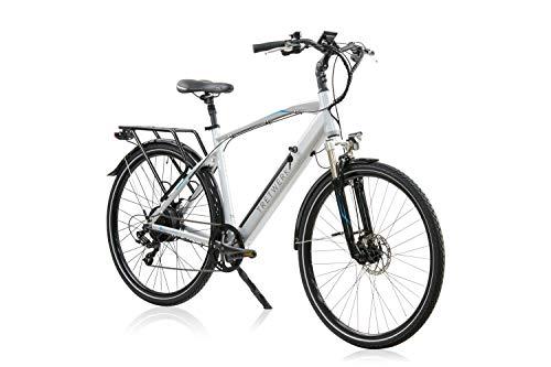 Tretwerk Bronx 2.0 Trekking E-Bike Pedelec Silbergrau