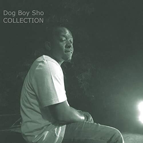 Dog Boy Sho
