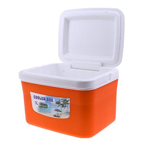 perfeclan 5L 13L Caja Fresca Grande para Picnic, Almuerzo, Playa, Camping, Bolsa Fresca con Asa Portátil - 5L