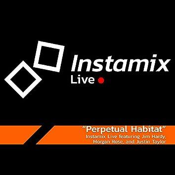 Perpetual Habitat (feat. Jim Hardy, Morgan Rose & Justin Taylor)