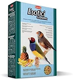 PADOVAN GRANDMIX ESOTICI Feed for small exotic birds 1 kg - BIRDS FOOD