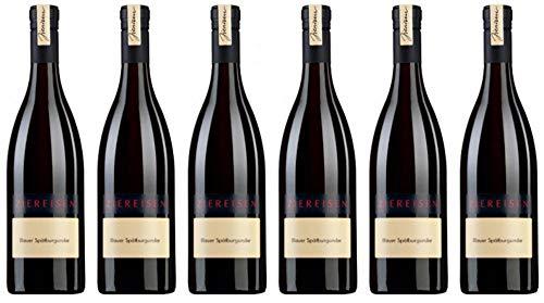 6x Blauer Spätburgunder 2016 - Weingut Ziereisen, Baden - Rotwein