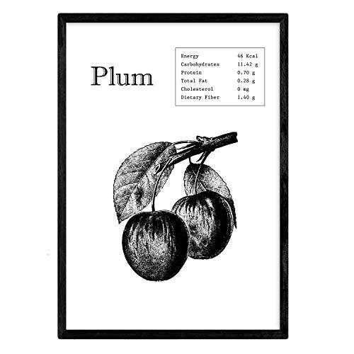 Nacnic Poster de Plum. Láminas de Frutas y Verduras en inglés. Tamaño A4