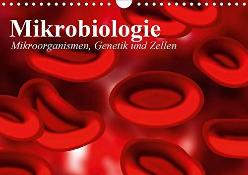 Mikrobiologie. Mikroorganismen, Genetik und Zellen (Wandkalender 2020 DIN A4 quer): Interessante Bilder von Bakterien, Zellen und Blutkörperchen (Monatskalender, 14 Seiten ) (CALVENDO Gesundheit)