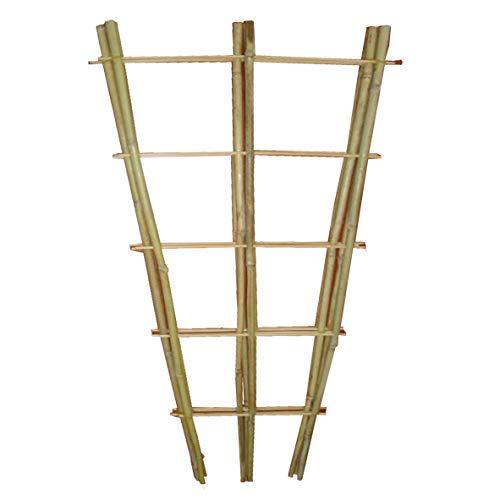 Gardissimo Bambus-Rankgitter 140x50x1,5cm 3er-Set