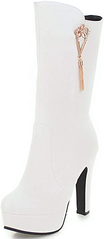 Ghssheh Women's Elegant Fringes Round Toe Platform Chunky High Heel Side Zipper Mid Calf Boots Beige 4 M US