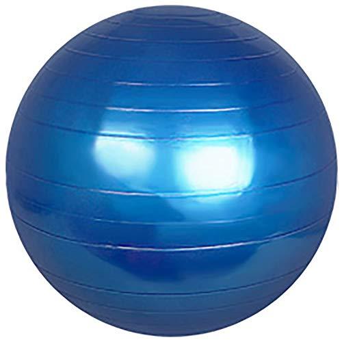 Wj Pelota de Ejercicio Pelota de Yoga Pelota de gimna Pelota de Ejercicio, 55cm 65cm 75cm Pelota de Yoga con Bomba, Anti-explosión y Extra Grueso para Yoga/Pilates/Fitness/Embarazo y Trabajo de Par