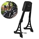 HTTMT MT146-S- Black Skull Backrest Sissy Bar With Leather Pad Compatible with Harley Sportster 1200 883