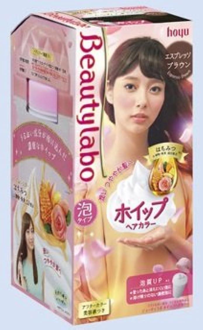 開発する良心正直BeautyLabo(ビューティラボ) ホイップヘアカラー エスプレッソブラウン × 24個セット