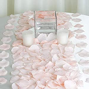 Efavormart 500pcs Artifical Blush Rose Petals for Wedding Aisle Party Favor Jewelry Candy Sheer Flower Decoration