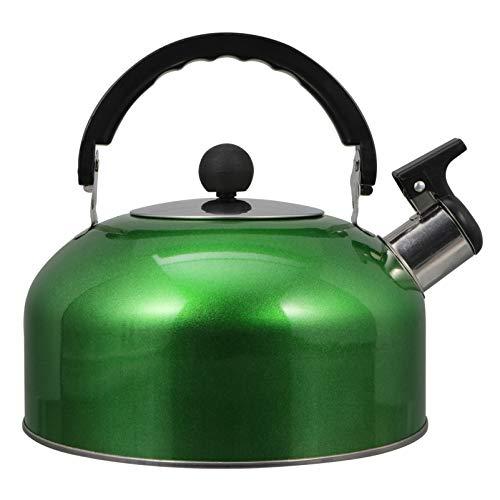 Hemoton 3L Bollitore da tè in Acciaio Inox Acqua Calda Bollente Teiera Contenitore Scaldacqua Moderno con Manico Ergonomico Sicuro per La Casa Piano Cottura a Gas Verde