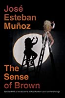 The Sense of Brown (Perverse Modernities)