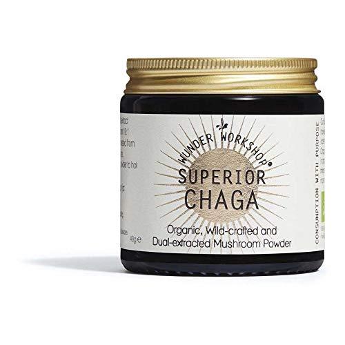 Wunder Workshop Chaga Calidad Superior Superalimento Ecologico - Extracto Dual de Setas Concentrado Bioactivo - Producto Ético - Vegano, Vegetariano 40 g