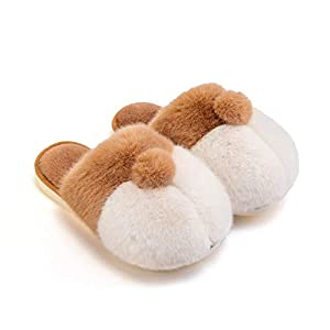 posee Corgi Gifts for Corgi Lovers Cute Slippers for Women Warm Kids Slippers Corgi Socks Girls Corgi Plush Men House Animal Slippers Dog Slippers